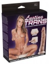 532835 Lusting Trans panna